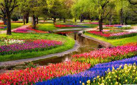 Spring Garden Wallpapers - Top Free ...