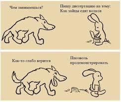 Диссертация как зайцы едят лис Страна анекдотов В Мой Мир