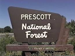 Image result for prescott forest image