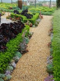 landscape plants for california gardens tjok info