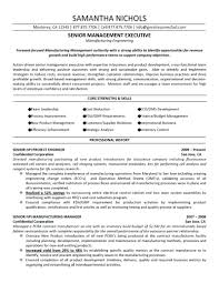 Product Management Resume Template Product Management Template 91