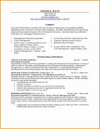 Non Profit Resume Examples Lovely Executive Summary Resume Example