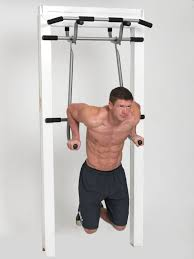 Shamrock Triple Pullup Dip And Suspension Gym Best Pull
