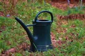 Watering Can Container Pot - Free photo on Pixabay