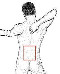 Bauchfett weg in 14 Tagen - Abnehmen ohne Sport