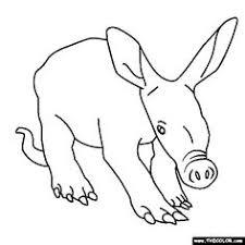 Small Picture Anteater 4 Coloring page Animal coloring pages Pinterest