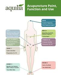 Acupuncture Points For Fertility Chart Time For Acupuncture Then Read This Information Be Sure