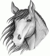 how to sketch a horse step by step sketch drawing technique free drawing tutorial