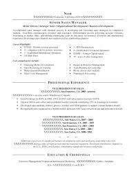 Real Estate Sample Resume Viragoemotion Com