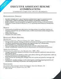 Sample Combination Resume Sample Combination Resume Template Joefitnessstore Com