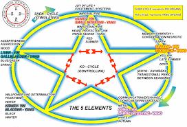 Shiatsu Tsubo Chart Dutch School For Classical Shiatsu Level 2