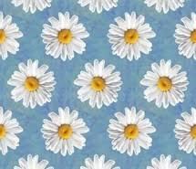 girly wallpaper. Simple Girly Flowers Wallpapers Girly Wallpaper Flowers Chamomiles  Wallpaper On Girly Wallpaper P