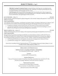 Guidewire Resume Gallery Format Examples Incredible Business Analyst