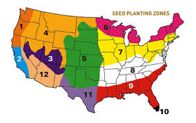 Grass Seed Germination Chart When To Plant Grass Seed In Your State