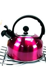 glass stovetop tea kettle best tea kettle best tea kettle kettles full image for electric or glass stovetop tea kettle