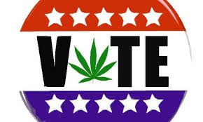 Than More Politicians In Votes Midterms These Marijuana The Got ZH4tn