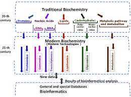 modern biochemistry in research of human gnant cells and figure 2 the scheme of interconnection between multidisciplinary traditional biochemistry modern biochemistry and omics disciplines bioinformatics