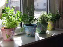 Kitchen Window Herb Garden Indoor Gardening Explore Best Indoor Gardening Ideas