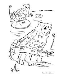 Small Picture Frogs coloring pages 003