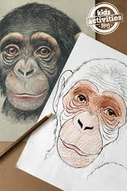 Small Picture Chimpanzee Coloring Pages for Kids