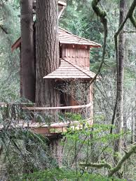 pete nelson s tree houses. Contemporary Pete Pete Nelson S Tree Houses Inside T