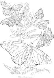 Additionally, you'll find each coloring page. Detailed Butterfly Coloring Page Butterfly Coloring Page Mandala Coloring Pages Coloring Pages