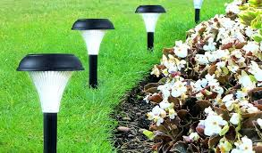 amazing garden lighting flower. Best Solar Garden Lights Are An Efficient Way Of Illuminating Areas Around Your . Amazing Lighting Flower