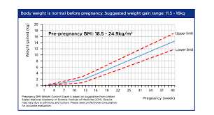 Pregnancy Weight Gain Month By Month Chart Eye Catching Weight And Pregnancy Chart Baby Weight Gain By