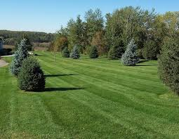 cost factors of lawn care
