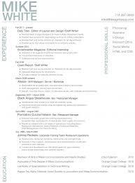 professional resume resume cv professional resume 4