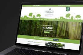 Web Designer Beckenham Web Design London Seo Consultants London Website