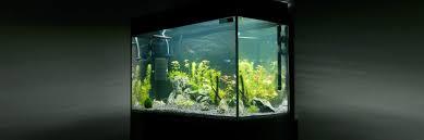 top 5 best 40 gallon aquarium filters