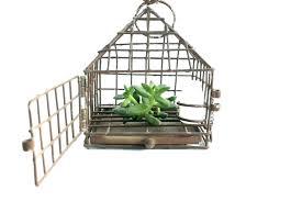birdcage chair hanging hanging birdcage chair