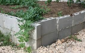 cinder block garden wall. 15 Creative Cinder Block Raised Garden Beds Lovers Club Cement Wall