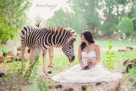 Bush Wedding Venues South African Wedding Venues
