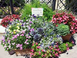 Stylish Shady Containers  Fine GardeningContainer Garden Plans Pictures