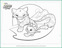 Animal Jam Coloring Pages Admirable Animal Jam Coloring Page Snow