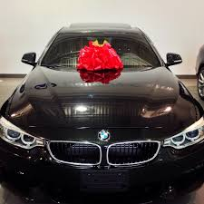 BMW 3 Series bmw 435i xdrive m sport : Just picked up my first BMW: 435i Xdrive M-sport. How did I do? : BMW
