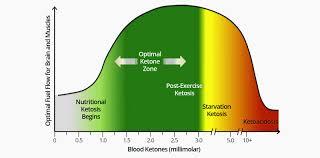 Blood Ketone Level Clarification Ketogenic Forums