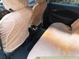 image titled remove mold odors from inside automobiles step 1