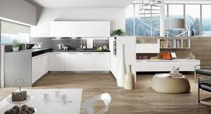 Plain White Kitchen Cabinets Astounding Neutral U Shaped Kitchen Layouts Design Presenting