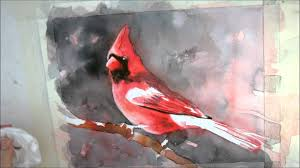 7th installment cardinal watercolor painting tutorial