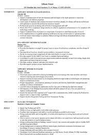 Apps Dev Senior Manager Resume Samples Velvet Jobs