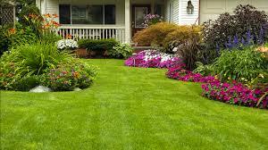 lawn care cincinnati. Wonderful Cincinnati Cincinnati Lawn Care  To U