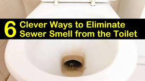 eliminate sewer smell from the toilet