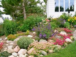 Small Picture rock garden landscaping landscape ideas and pictures Garden