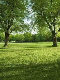 outdoor backgrounds. Outdoor Backgrounds 14 Best \u0026quot;outdoor\u0026quot; Backdrops Images Outdoor Backgrounds