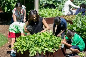 Michelle Obama Kitchen Garden The Spring White House Kitchen Garden Harvest Lets Move