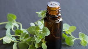 Image result for free pics of oregano capsules