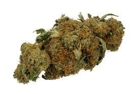 Resultado de imagen de museu marihuana